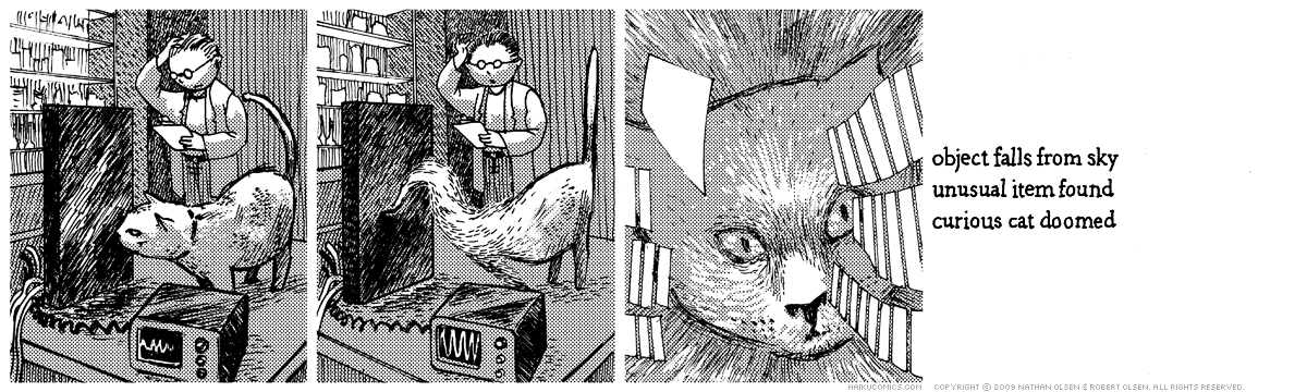 A webcomic about a cat who goes on a strange adventure. Haiku: object falls from sky, unusual item found, curious cat doomed.